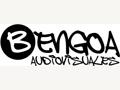 Bengoa Audiovisuales