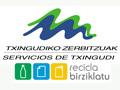 Txingudiko Zerbitzuak